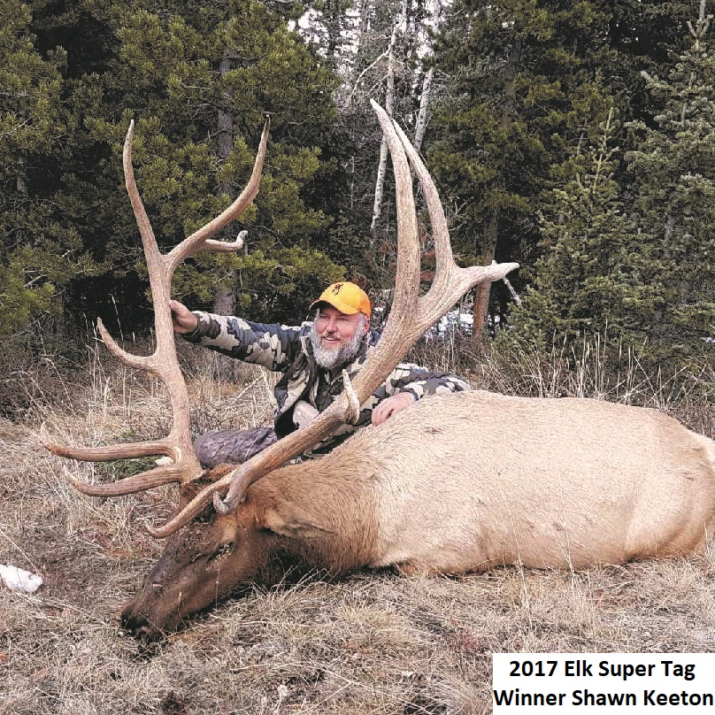 Wyoming Super Tags: The Hunt of a Lifetime